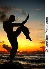 krijgshaftige kunst, figuur, op, strand