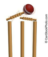 krikett labda, csapó, a, rácsajtó