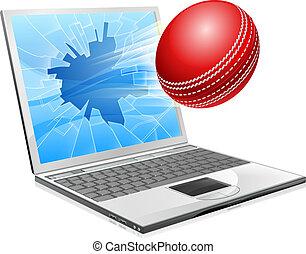 krikett, laptop, törött, ellenző, fogalom