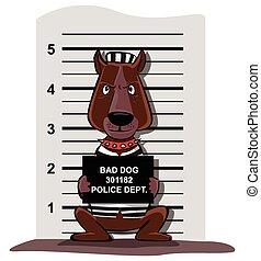kriminell, hund