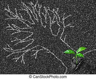 krita, kontur, av, träd, på, asfaltroad, och, ung, tillväxt,...