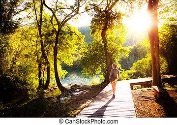 krka, ocaso, bosque, caminata