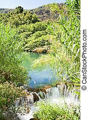 Krka, Sibenik, Croatia - Water reed at a small waterfall within Krka National Park