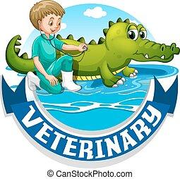 krokodil, állatot megvizsgál, állatorvos, aláír
