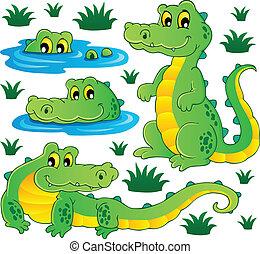 krokodil, beeld, thema, 3
