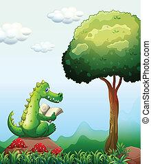 krokodil, lesende , baum, oben, gestein