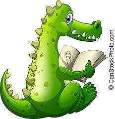 krokodil, lesende