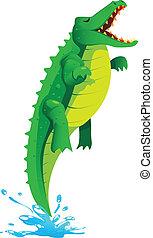 krokodil, springende