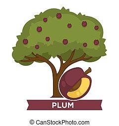 krone, reif, pflaumenbaum, früchte, dick