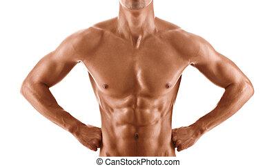 krop, dreng, nude, muskuløse, sexet