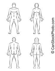 krop, kvinde, udkast, illustration, blank, mand