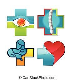 krop, medicinsk, vektor, logo, afdelingen, symbol