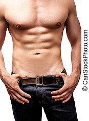 krop, sexet, fraværende., muskuløse, mand