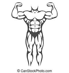 krop, sort mandlig, silhuet, muskel