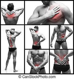 kropkuje, serce, ból, fotografie, collage, ból, ciało, odizolowany, człowiek, tło., strony, czerwony, prostatitis, atak, stomach-ache., biały, kilka, ból w krzyżu, nerka