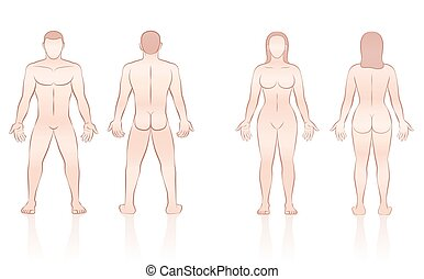 kropp, kvinna tillbaka, mänsklig, främre del, man