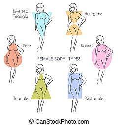 kropp, kvinnlig, slagen