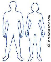 kropp, mänsklig