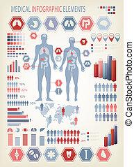 kropp, mänsklig, elements., organs., medicinsk, inre, vector...