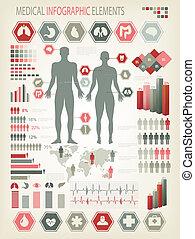 kropp, mänsklig, elements., organs., medicinsk, inre, vector., infographics
