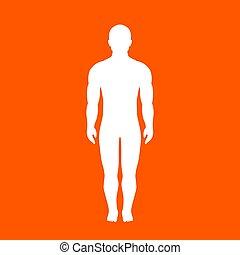 kropp, silhuett, mänsklig