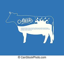 krowa, sylwetka, z, bryzg, krople, milk.
