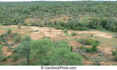 Aerial view of Kruger National Park savannah landscape. Drone shot.