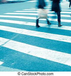 kruising, mensen, zebra