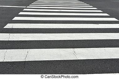 kruising, zebra