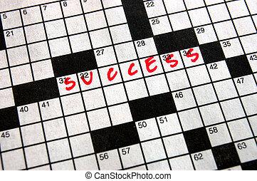 kruiswoordraadsel, succes