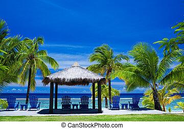 krzesła, przód, zdumiewający, plaża