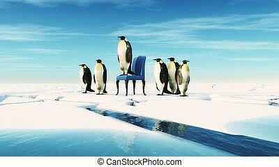 krzesło, siada, lider, pingwin