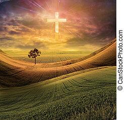 krzyż, radiates, lekki, w, niebo
