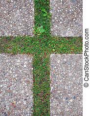 krzyż, w, przedimek określony przed rzeczownikami, trawa