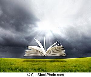 książka, i, natura