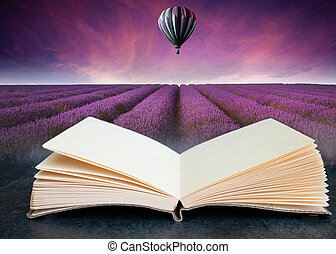 książka, lato, powietrze, balloon, złożony, otwarty, lawenda, gorący, oszałamiający, wizerunek, zachód słońca, konceptualny, krajobraz, pole