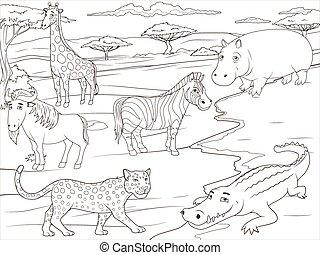 książka, savannah, gra, kolorowanie, afrykanin, oświatowy