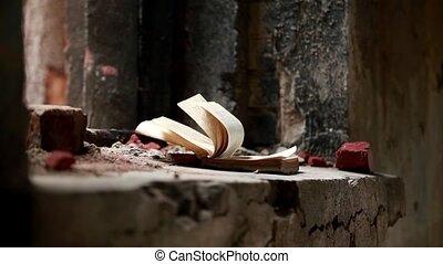 książka, stary, otworzony, wiatr