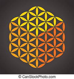 kub, liv, blomma