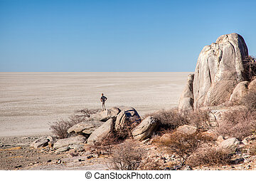 Makgadikgadi pans - Kubu Island in the Makgadikgadi pans