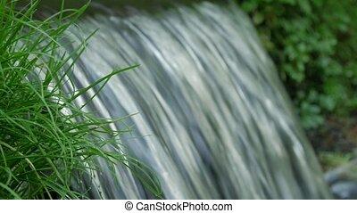 kugel, fruehjahr, auf, roh, grass., grün, strömend, schließen, durch