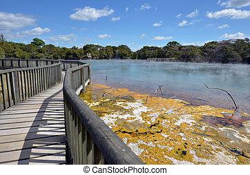 Kuirau Park in Rotorua - New Zealand - Hot pools in Kuirau...