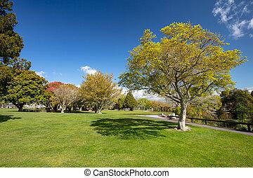 kuirau, parque, rotorua