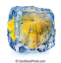 kulacs, köb, jég