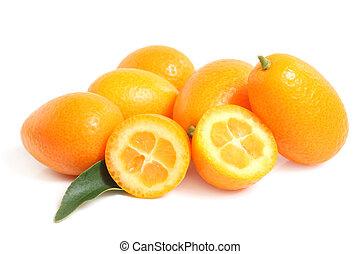 kumquat, folha