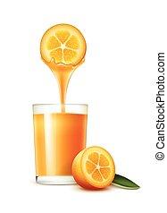 Kumquat juice - Vector kumquat slice with juice stream and...