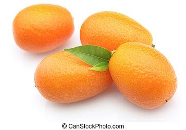 kumquat on a white background close up