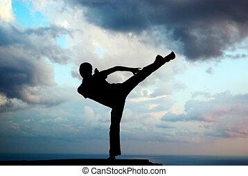 kung fu, a, il, bordo
