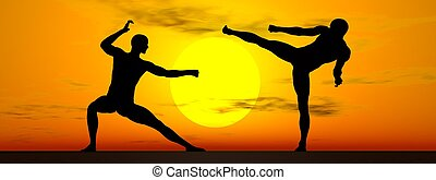 Shadow of two men in kung-fu posture by sunset