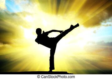kung fu, hos, den, maka